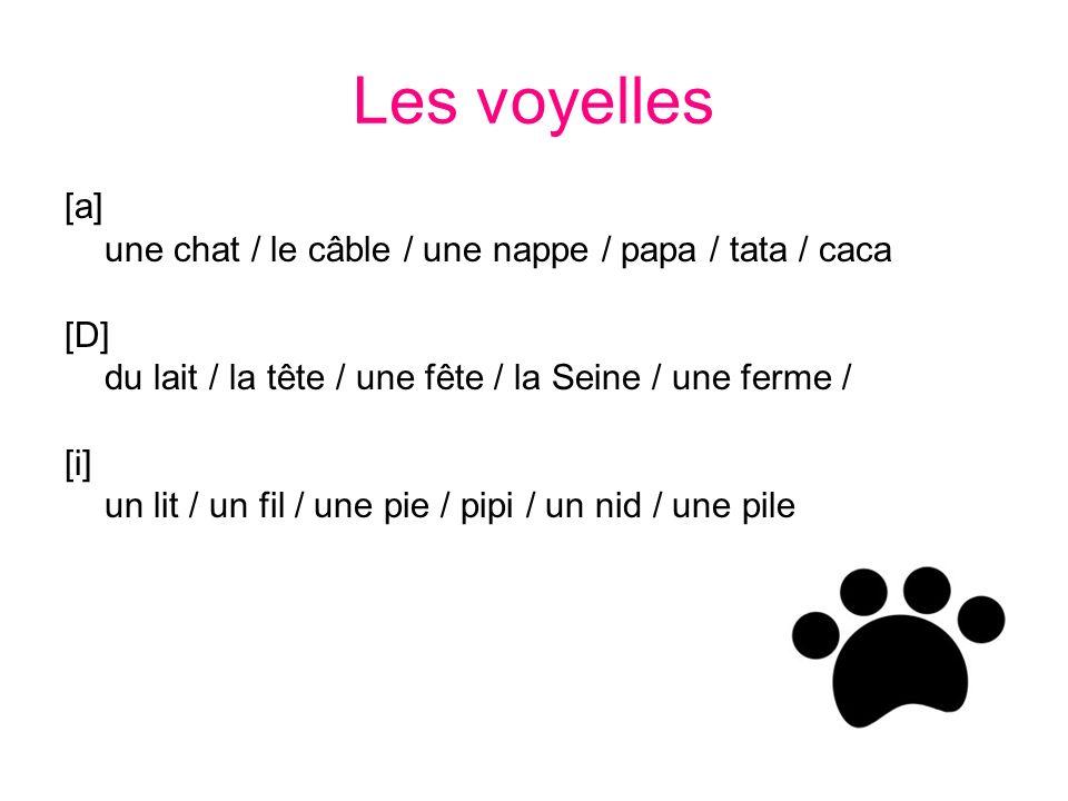 Les voyelles [a] une chat / le câble / une nappe / papa / tata / caca